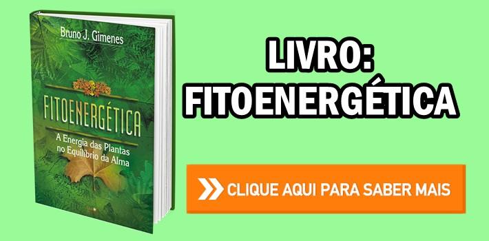Livro Fitoenergética A Energia das Plantas no Equilíbrio da Alma