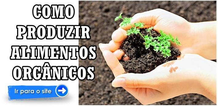 Agricultura Orgânica: Curso Como Produzir Alimento Orgânico